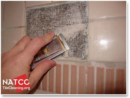 Perfect Removing Thinset From Shower Wall With Ceramic Soap Dish Shower